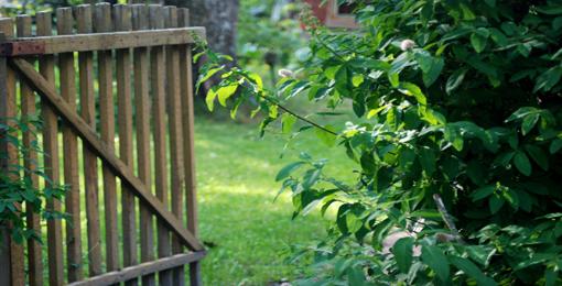 kuva Misia Rytkönen. Veräjä avoinna puutarhaan.